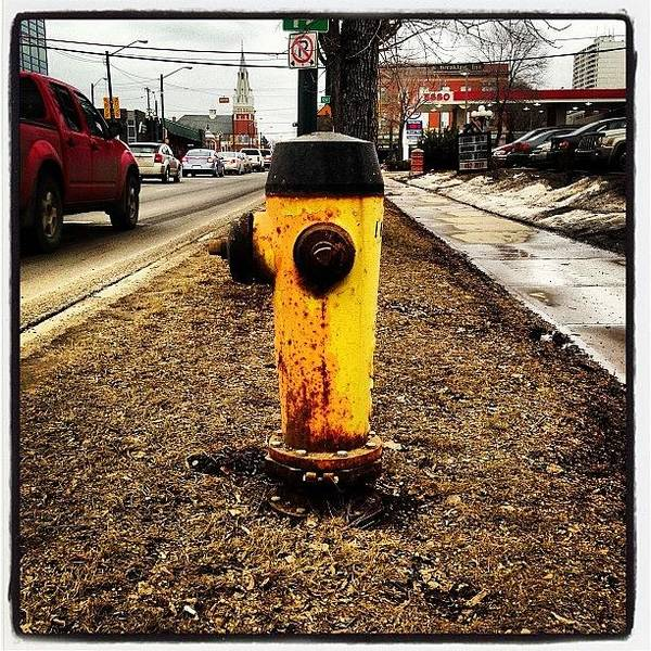 Wall Art - Photograph - Fire Hydrant In Edmonton by Eric Dick