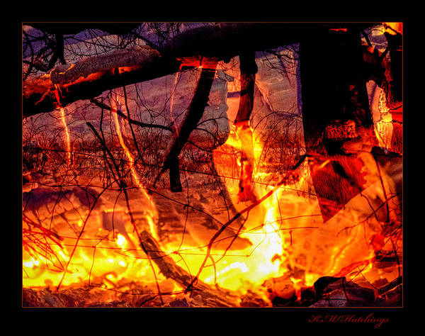Wall Art - Photograph - Fire In Snow by Keith Hutchings