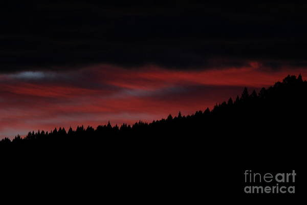 Photograph - Fire In The Sky by Ann E Robson