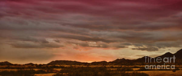 Photograph - Fire In The Sky by Donna Greene