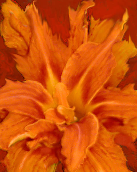 Painting - Fire Lily by Anne Cameron Cutri
