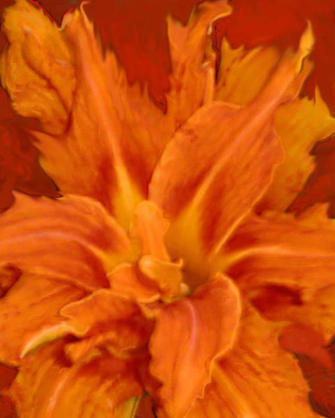 Fire Lily Art Print