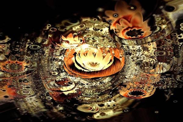 Digital Art - Fire Lotus by Anastasiya Malakhova