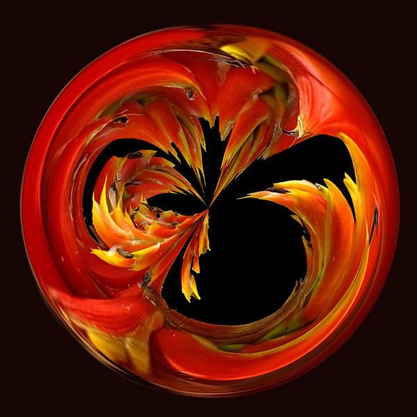 Photograph - Fireball Orb by Bill Barber