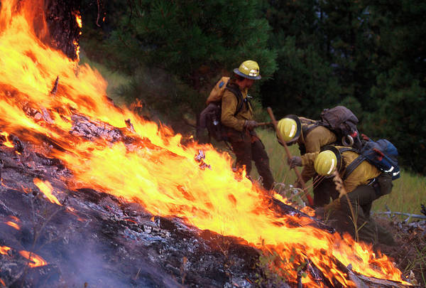North Idaho Photograph - Firefighters by Kari Greer/science Photo Library