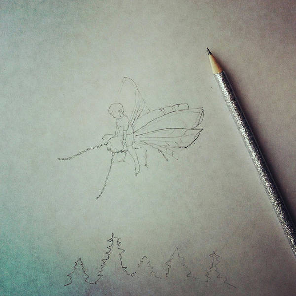 Pencil Drawing Photograph - Firefly Drawing by Cyndi Monaghan