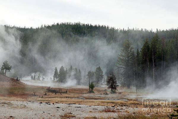 Photograph - Firehole Lake Drive In Yellowstone National Park by Fred Stearns