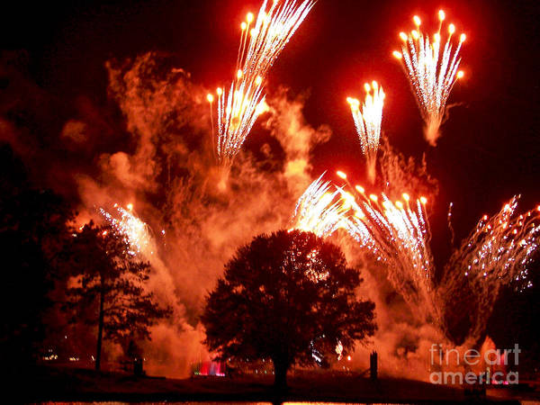 Photograph - Fireworks At Epcot 1 by Tom Doud