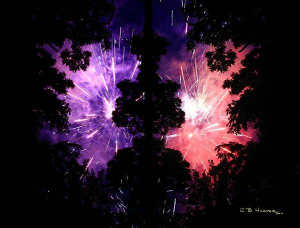 Photograph - Fireworks Forest Kidney by R B Harper