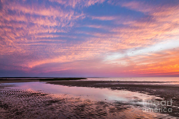 Wall Art - Photograph - First Encounter Sunset by Susan Cole Kelly