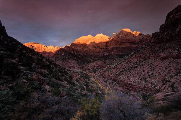 Photograph - First Light 2 Zion National Park by Peter OReilly