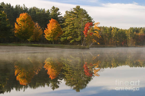Photograph - First Light At Lake Shaftsbury by Charles Kozierok