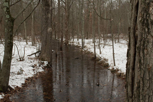 Somerset County Photograph - First Snow Of The Season by Gregory Andrus