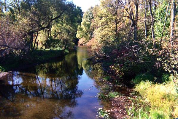 Photograph - Fish Creek by Joseph Yarbrough