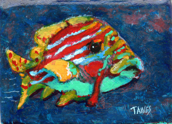 Painting - Fish by Dennis Tawes