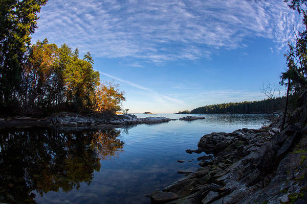 Photograph - Fish Eye View by Randy Hall