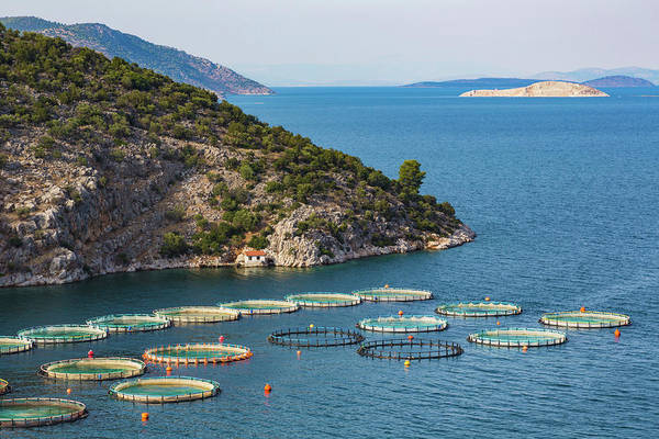 Peloponnese Photograph - Fish Farming Or Pisciculture by Panoramic Images