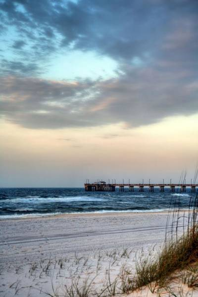 Wall Art - Photograph - Fish Gulf Shores by JC Findley