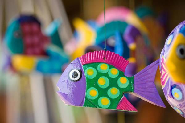 Fish Of Color Art Print