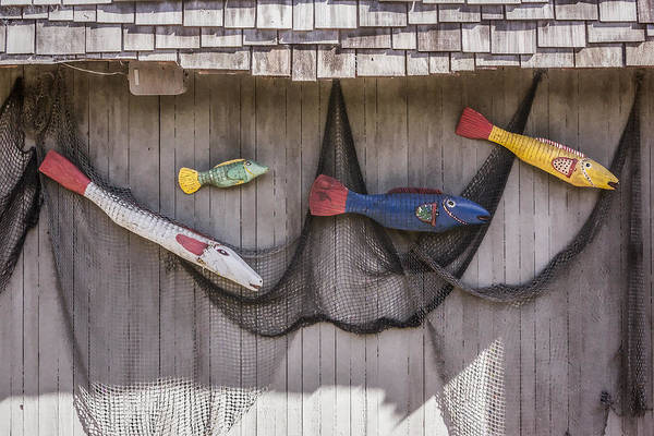 Digital Art - Fish Out Of Water by Photographic Art by Russel Ray Photos
