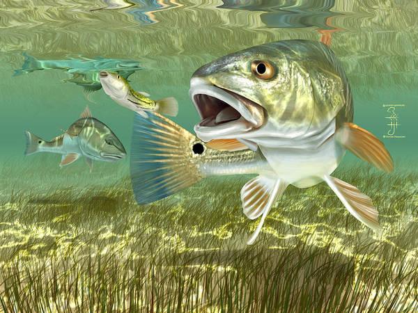 Redfish Digital Art - Fisherman's Post Redfish by Hayden Hammond