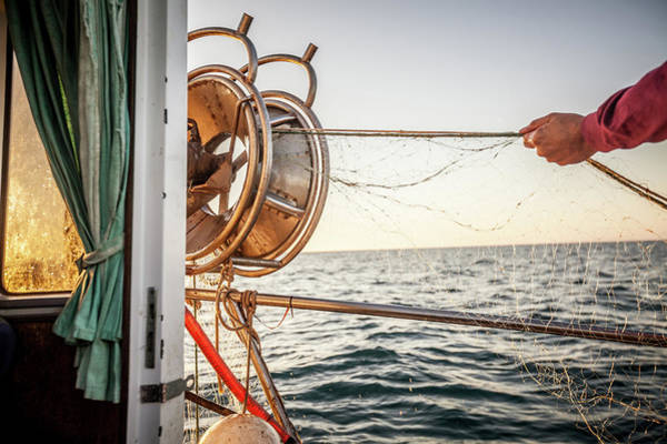 Work Boat Photograph - Fishermen At Work, Pulling The Nets by Piola666