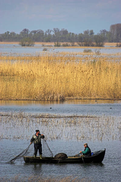 Danube Photograph - Fishermen Bring In Their Harvest by Martin Zwick