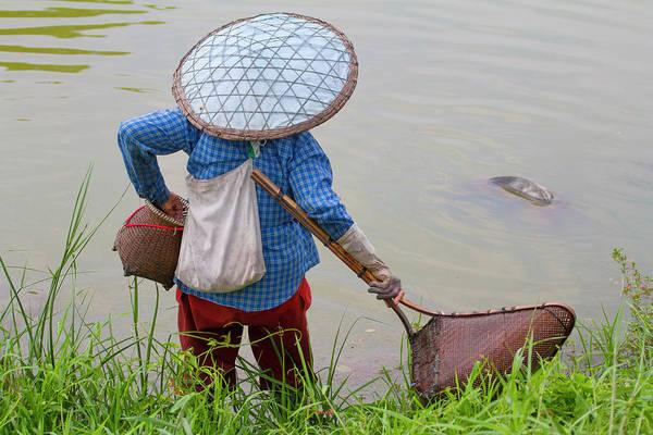 Wading Photograph - Fisherwomen In Rice Fields by Jean-claude Soboul