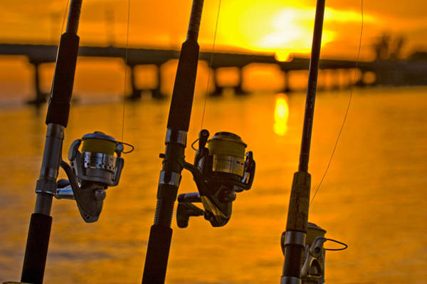 Photograph - Rods And Reels At Sunset On San Carlos Pass by Ginger Wakem