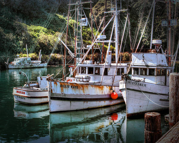 Photograph - Fishing Boats In Fort Bragg by William Havle