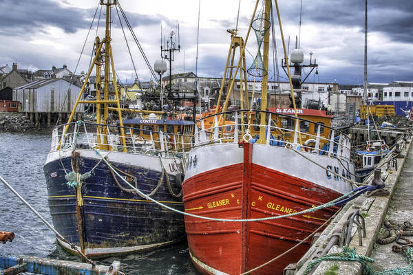 Photograph - Fishing Boats Of Mallaig Scotland by Jason Politte