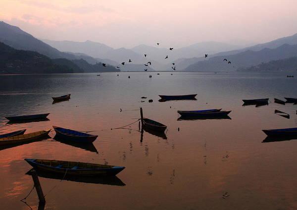 Photograph - Fishing Boats - Phewa Lake - Nepal by Aidan Moran