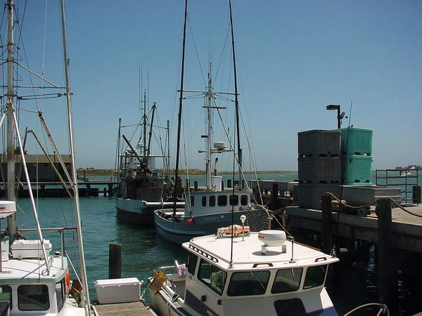Photograph - Fishing Boats by Steve Thompson