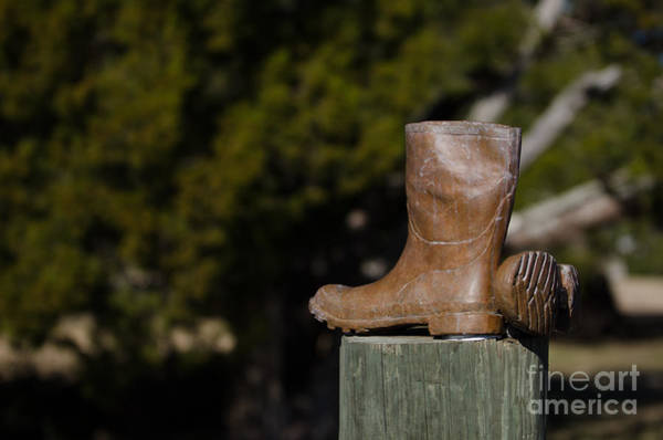 Photograph - Fishing Boots by Dale Powell