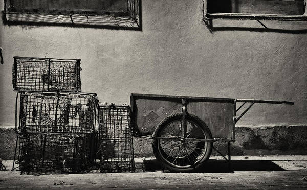 Photograph - Fishing Gear by Pablo Lopez