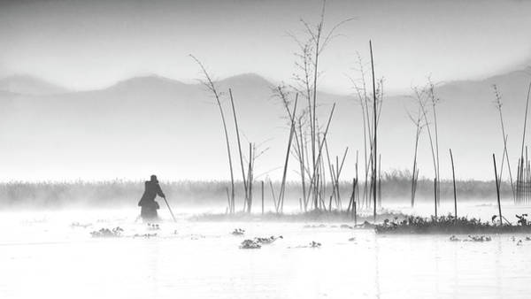 Wall Art - Photograph - Fishing In A Misty Morning by Joe B N