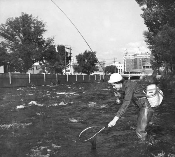 Trout Stream Photograph - Fishing In The City by Underwood Archives