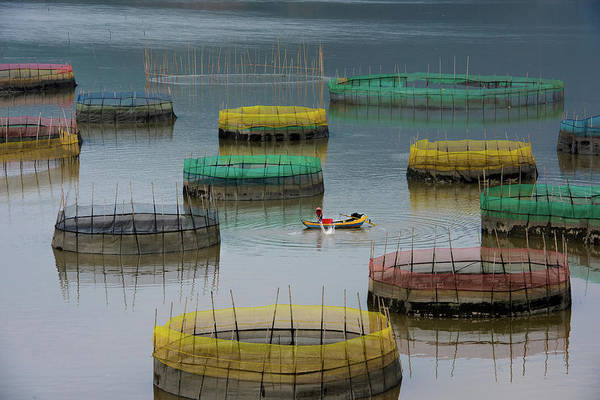 Ripples Photograph - Fishing Life by Bongok Namkoong