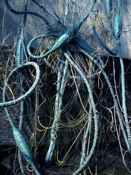 Photograph - Fishing Net Play   by Colette V Hera  Guggenheim