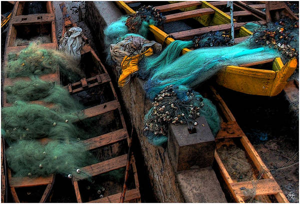 Photograph - Fishing Nets On Ghanain Boats by Wayne King
