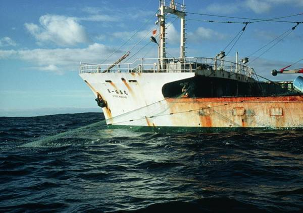 Drift Photograph - Fishing Trawler by Peter Scoones/science Photo Library