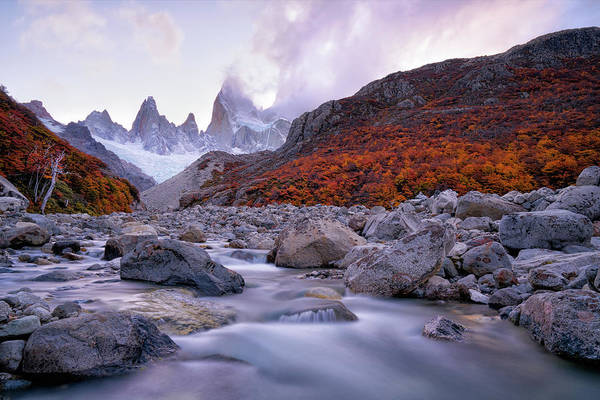 Tree Top Photograph - Fitz Roy Under Twilight by John Fan