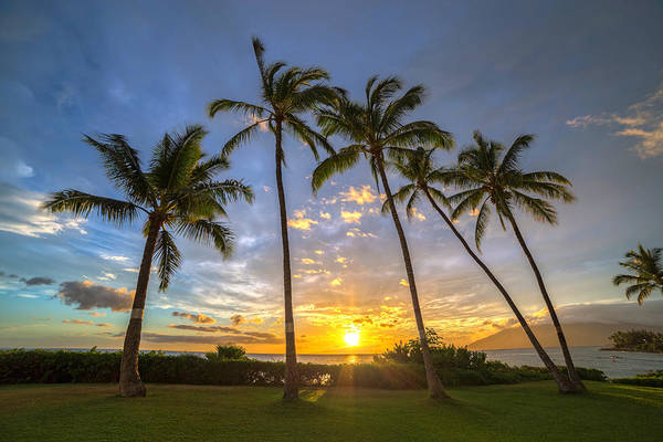 Photograph - Five Palms Sunset by Pierre Leclerc Photography