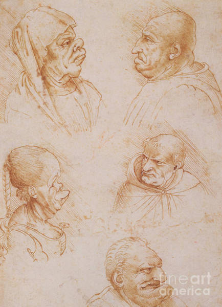 Ugly Wall Art - Drawing - Five Studies Of Grotesque Faces by Leonardo da Vinci