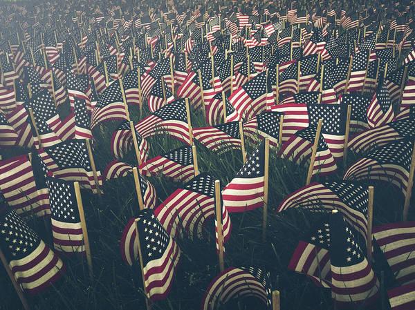 Usa Flag Photograph - Flags by Fran Polito