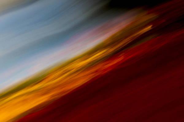 Camera Raw Photograph - Flair by Steve Belovarich