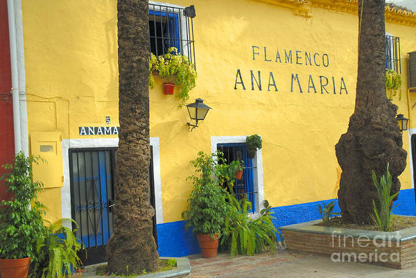 Photograph - Flamenco Bar In Marbella by Brenda Kean