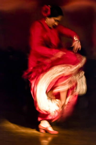 Photograph - Flamenco Series 1 by Catherine Sobredo