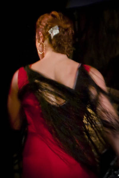 Photograph - Flamenco Series 6 by Catherine Sobredo