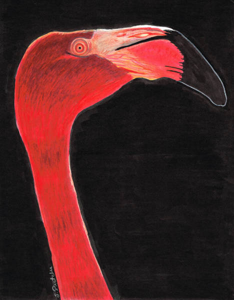 Pink Flamingo Wall Art - Painting - Flamingo Art By Sharon Cummings by Sharon Cummings